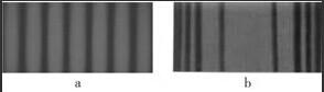干涉条纹与衍射条纹
